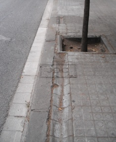Antic reg arbres Eixample 2.1marca burn