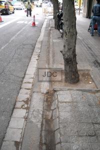 Antic reg arbres Eixample 3 amb marca d'aigua