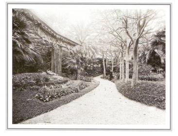 Jardí del Palauet del Marques de Santa Isabel. Frederic Ricart14