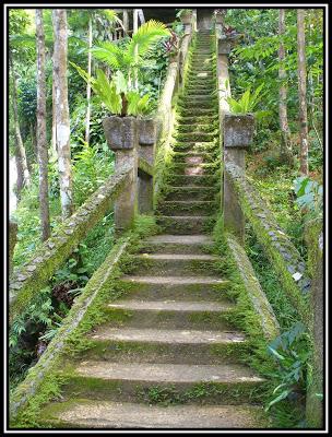 Daniek's PP 2007- Grand Staircase