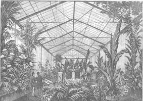 1883 Hivernacle Ciutadella, gravat. La Ilustració Catalana reduida