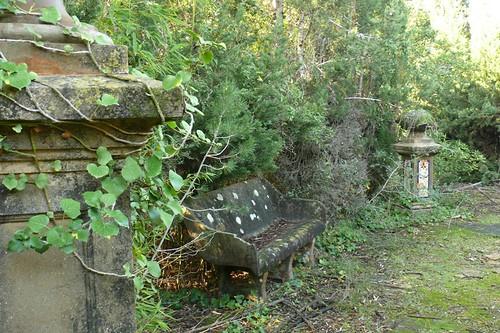 El jardí abandonat de Mas Pla. Cunit