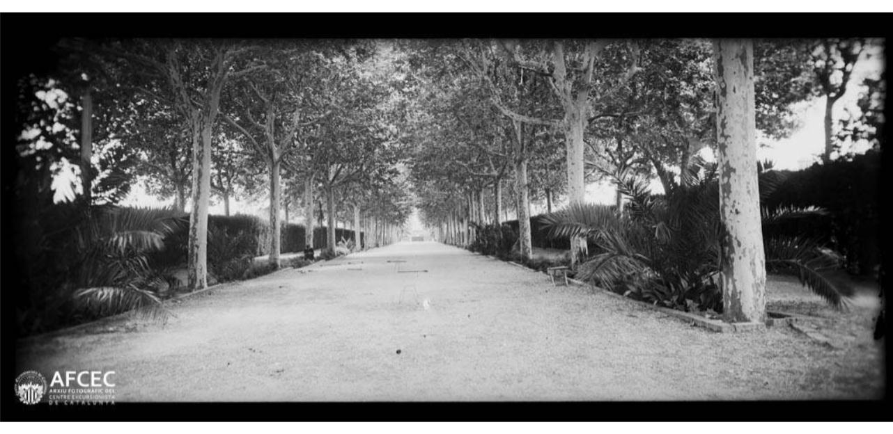 1929 Jardins de l'Alameda del Col·legi. Ignasi Canals i Tarrats. AFCEC